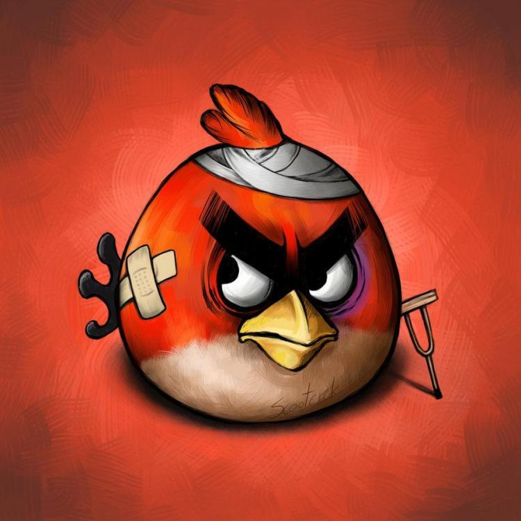 angry bird.jpg
