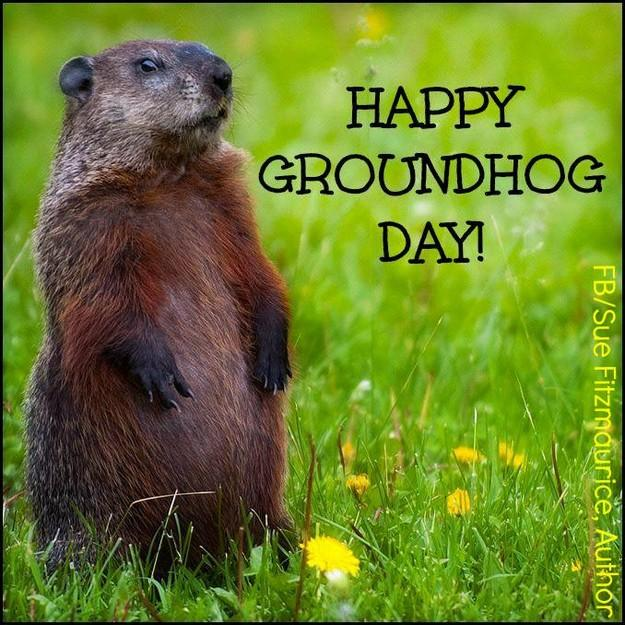 happy-groundhog-day_small.jpg